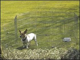 Kovová ohrádka pro psa Dog Park 2